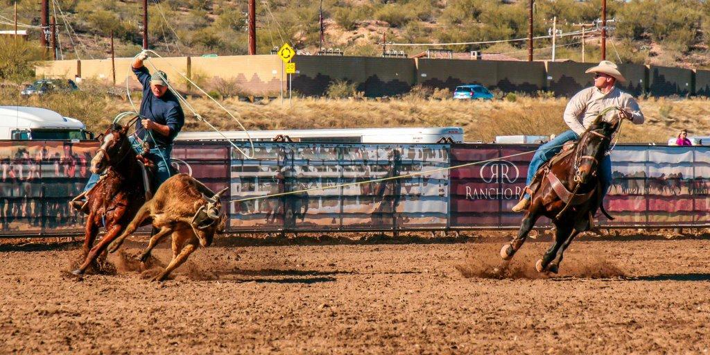Team roping in Wickenburg, Arizona